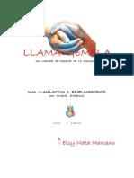 Copia+de+LLAMA+GEMELAl