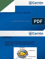 Perfil Lipidico