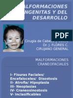 Malformaciones Congenitas y Del Desarrollo