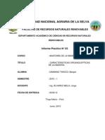 PRACTICA N°3 CARACTERISTICAS ORGANOLEPTICAS.pdf