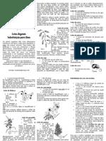 Folheto leites vegetais.pdf
