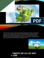 Ley de Medio Ambiente.pptx