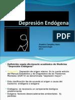 Depresión Endógena