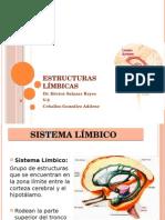 ESTRUCTURAS LIMBICAS