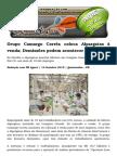 Grupo Camargo Corrêa Coloca Alpargatas à Venda; Demissões Podem Acontecer