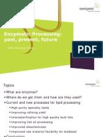 Novozyme Enzymatic Processing_Past, Present, Future.pdf