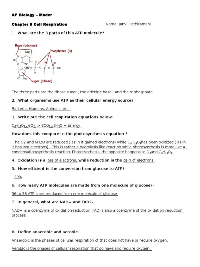 ap biology chapter 31 notes Science 101 ap biology chapter 31: cliff notes chapter 9: molecular biology cn pages 123-151 end of section review questions multiple-choice.