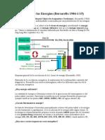 Pertubación de Las Energías (BORSARELLO)