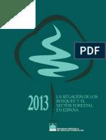 La situación de los bosques y el sector forestal en España 2013