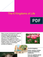 kingdoms of life