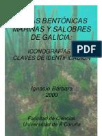 Guia Fotografica Algas Marinas Galicia-resol72