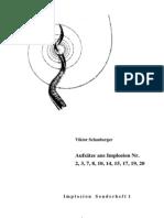 V. Schauberger - diverse Aufsätze