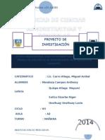 Proyecto de Inv. de La Cultura Org.