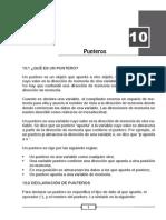 10 Punteros.pdf