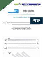 HGM - Frostig - Protocolo y Calificación