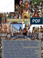 Tribal Communities  in India