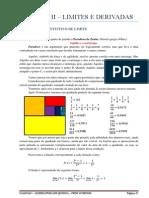 Apostila de Cálculo I - Unidade II.pdf