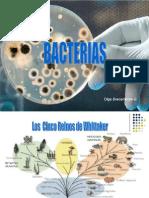 Bacterias Semana 3