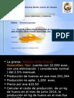 Costos_produccion_huevo para plato.pptx