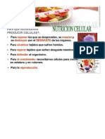 Nutricion de La Celula
