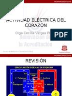 Actividad eléctrica