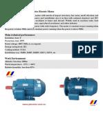 YE2 high efficiency electric motor.pdf