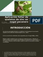 Aplicación Foliar de Quelatos de Zinc en Nogal