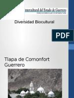 Tlapa de Comonfort