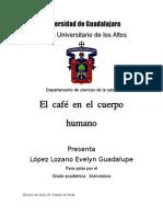 protocolo de investigacion cafe en el cuerpo.docx