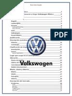 Grupo VW México y La Economía Mexicana2