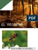 EL  REGRESO.pptx