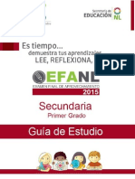 efanl_guiasecundaria1
