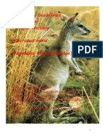 Kangaroo Husbandary.pdf