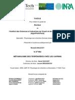 MÉTABOLISME DES TERPÉNOÏDES CHEZ LES CAPRINS.pdf