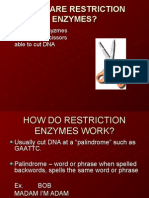 14265_Restriction Enzymes (1).ppt