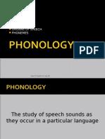 English Phonology (Pp)