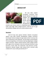 07-merah-bit.pdf