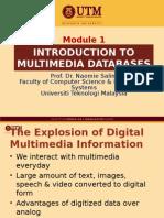 Moditroduction multimedia database
