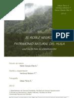 Cartilla roble negro.pdf
