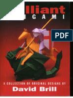 Brilliant Origami - David Brill