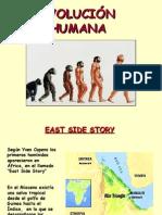 evolucin-humana-1228211241607993-8