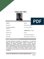 HOJA_DE_VIDA_CARLOS_DE_ARISTEGUI_SANTOS_nelly_oliveros.pdf