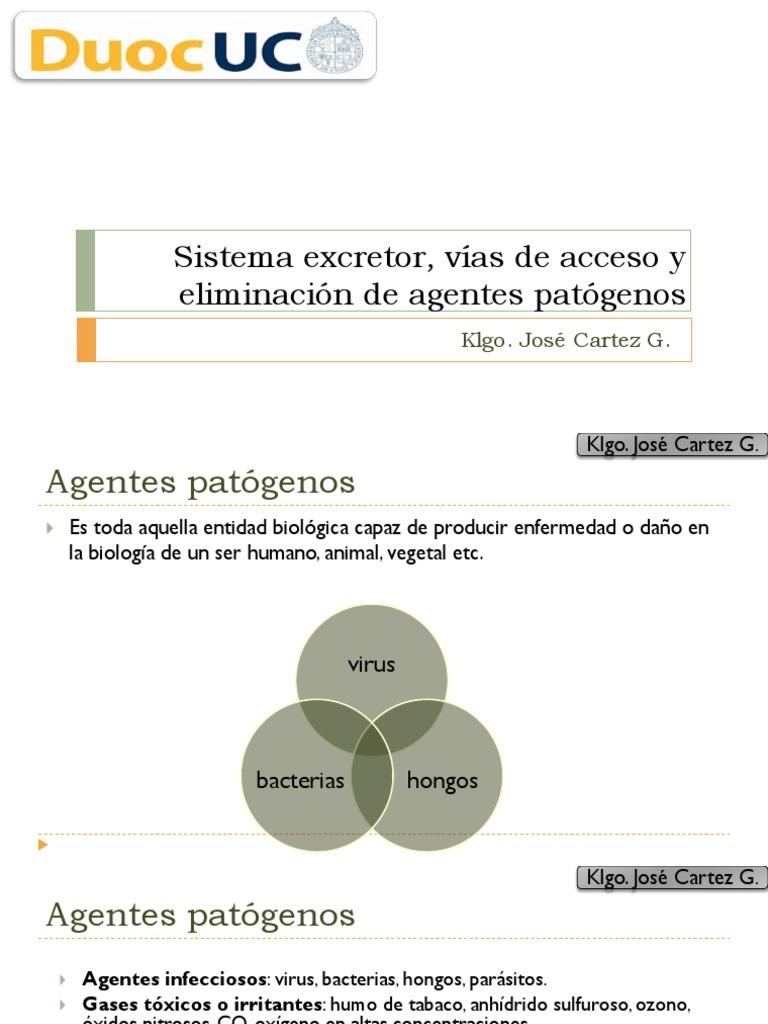 Agentes Patógenos y Sistema Excretor - 2015