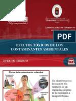 Exposicionefectos Toxicos Contaminantes Ambientales