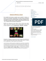 Manual de Reproduccion Bovina_ Endocrinologia