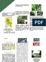 El Parque Nacional Chagres