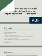 Tema 1 - Fluxurile Metabolice Celulare - Mod de Determinare in Regim Stationar
