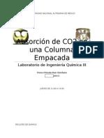 Absorción de CO2 en Una Columna Empacada