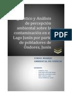 DIAGNOSTICO Y ANALISIS PERCEPCION POBLACION DE ONDORES.pdf