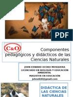DIDÁCTICA DE LAS CIENCIAS NATURALES.pptx